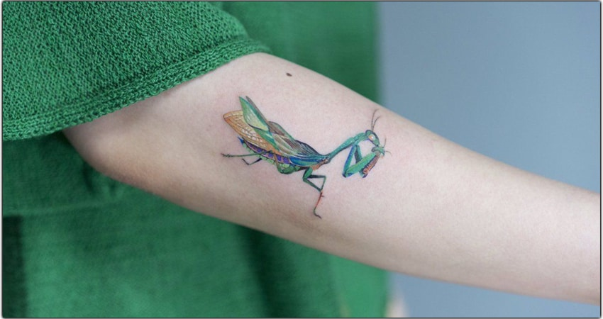Praying Mantis Tattoo Ideas In 2021 – Meanings, Designs, And More