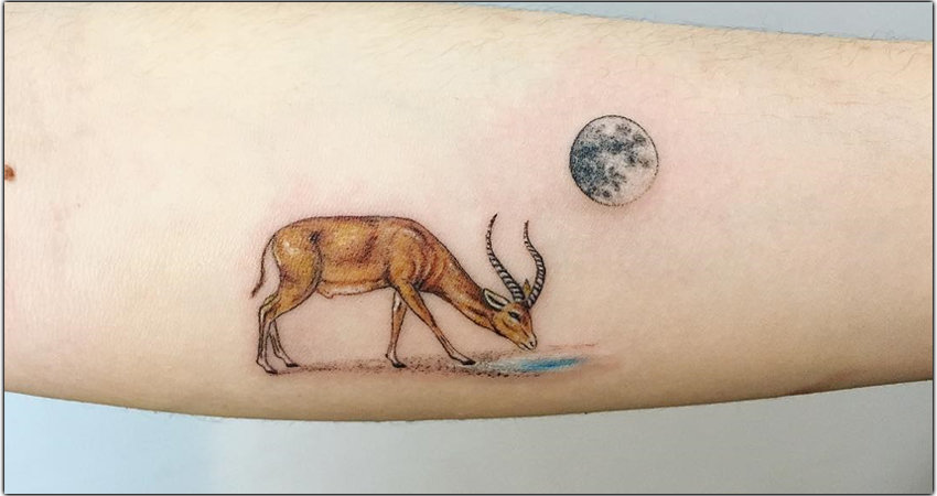 Gazelle Tattoo Ideas In 2021 – Meanings, Designs, And More