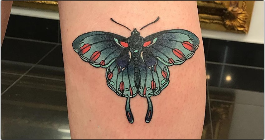 10 Swallowtail Tattoo Ideas in 2021 Meanings,Designs,And More